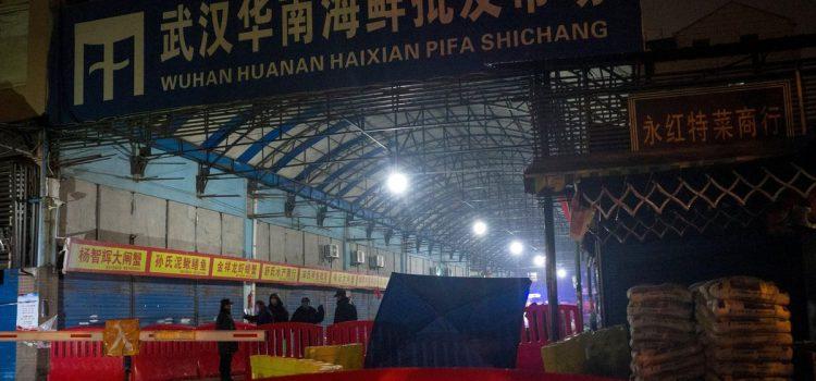 China blocks WHO team investigating coronavirus origins